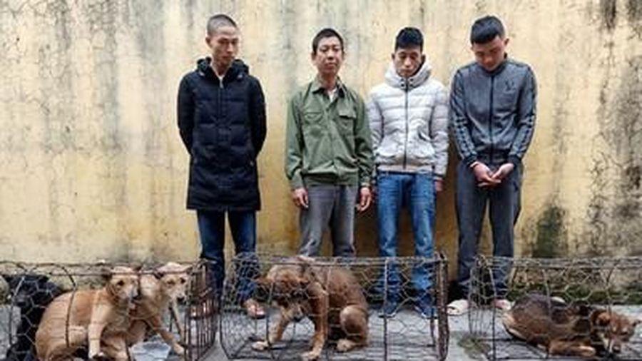 Triệt xóa băng nhóm trộm chó cực kỳ manh động