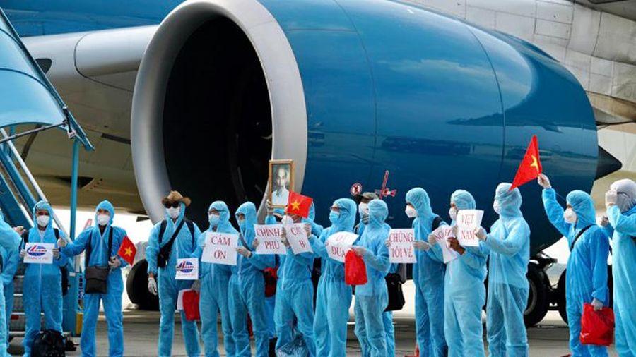 Khoảng 10 chuyến bay ''giải cứu'' công dân Việt Nam dịp trước Tết Nguyên đán