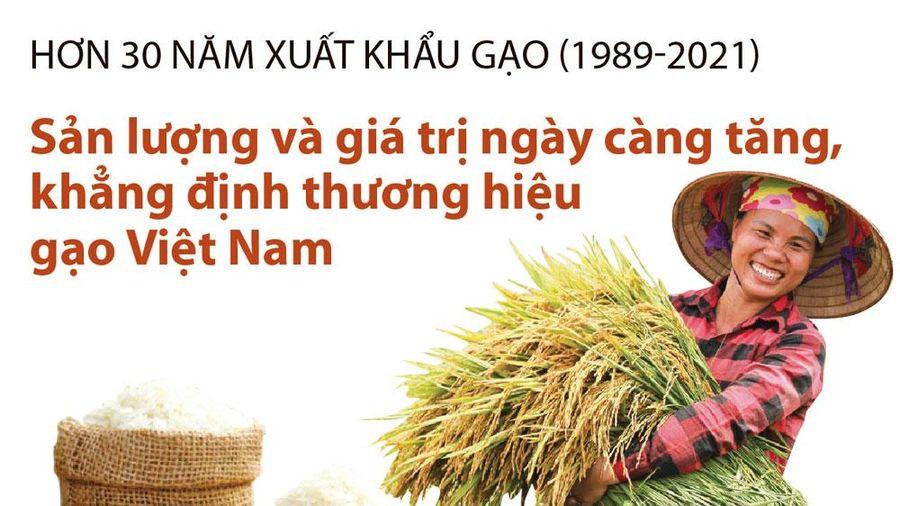 Infographics: Sản lượng và giá trị ngày càng tăng, khẳng định thương hiệu gạo Việt Nam