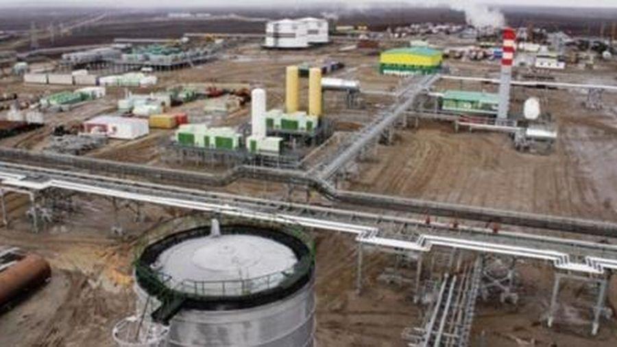 Giai đoạn 2014-2019: Liên doanh Rusvietpetro được chia cổ tức hơn 600 triệu USD