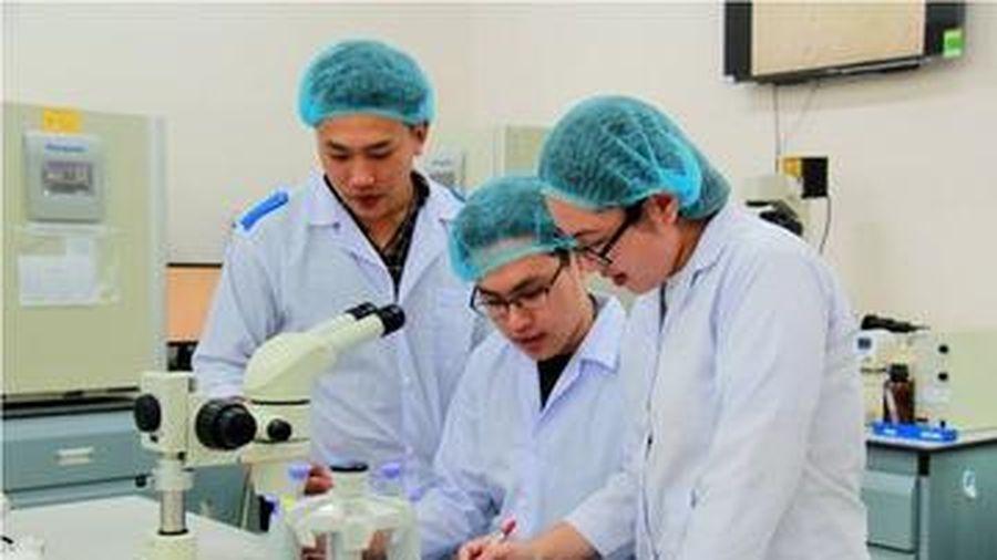 Đăng ký ngành Y khoa, thí sinh phải đạt loại giỏi trong 5 học kỳ?