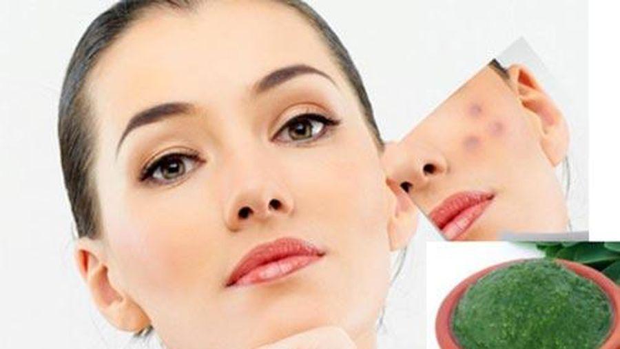 Lợi ích tuyệt vời của chùm ngây đối với làn da