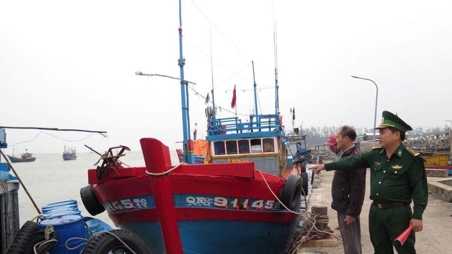 Quảng Ngãi tăng cường kiểm soát tàu cá dịp Tết