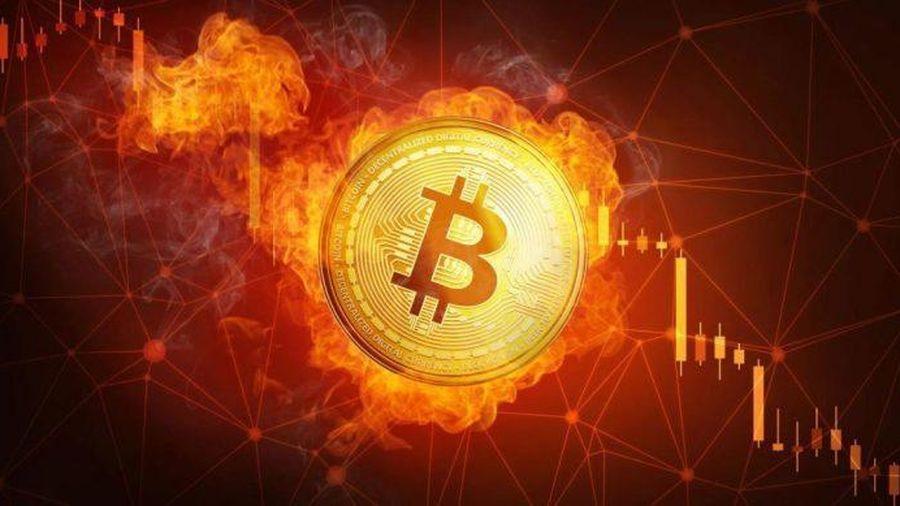 Giá Bitcoin hôm nay 28/1: Bitcoin giảm thê thảm, thị trường đỏ rực