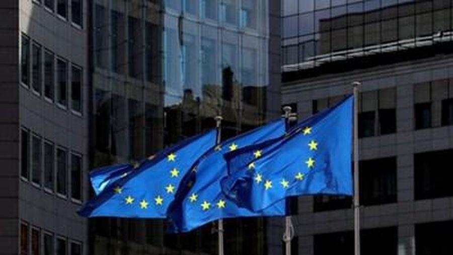 EU kêu gọi G20 không nên dừng các biện pháp kích thích kinh tế quá sớm