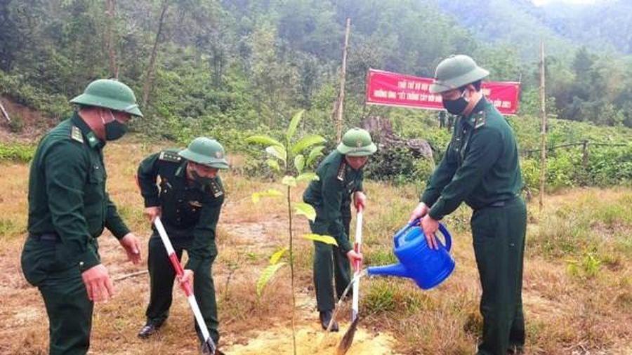 Bộ đội Biên phòng Đà Nẵng hưởng ứng 'Tết trồng cây đời đời nhớ ơn Bác Hồ'
