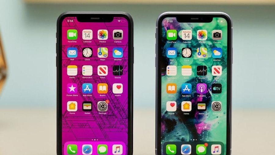 Đây là lý do người dùng iPhone cần cập nhật iOS 14.5 ngay lập tức