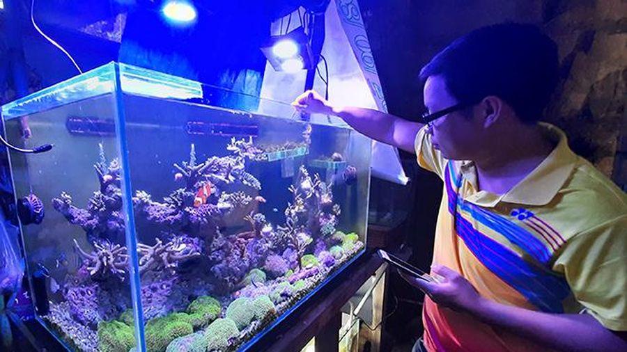 Nhà khoa học 9x và đề tài sinh sản nhân tạo san hô
