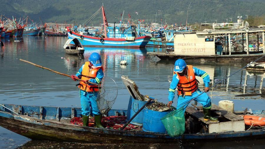 Quyết tâm xóa 'điểm nóng' ô nhiễm tại âu thuyền và cảng cá Thọ Quang