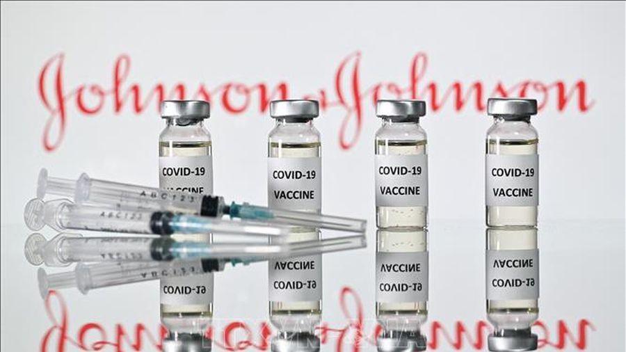 FDA đánh giá cao hiệu quả của vaccine của Johnson & Johnson