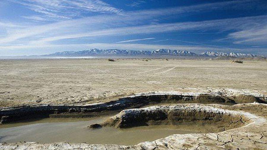 Sự sống bắt đầu từ một vũng nước trên Trái Đất?