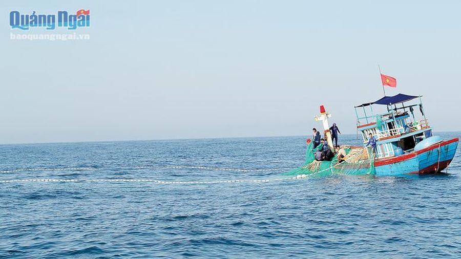 Vươn khơi bám biển đầu năm
