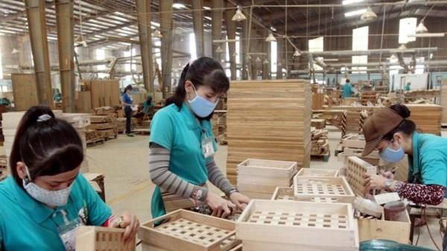 Xuất khẩu gỗ năm 2021 đạt ít nhất 14 tỷ USD