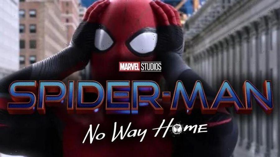 Chán 'troll' fan, Marvel Studios chính thức công bố tiêu đề của 'Spider-Man 3' rồi đây!