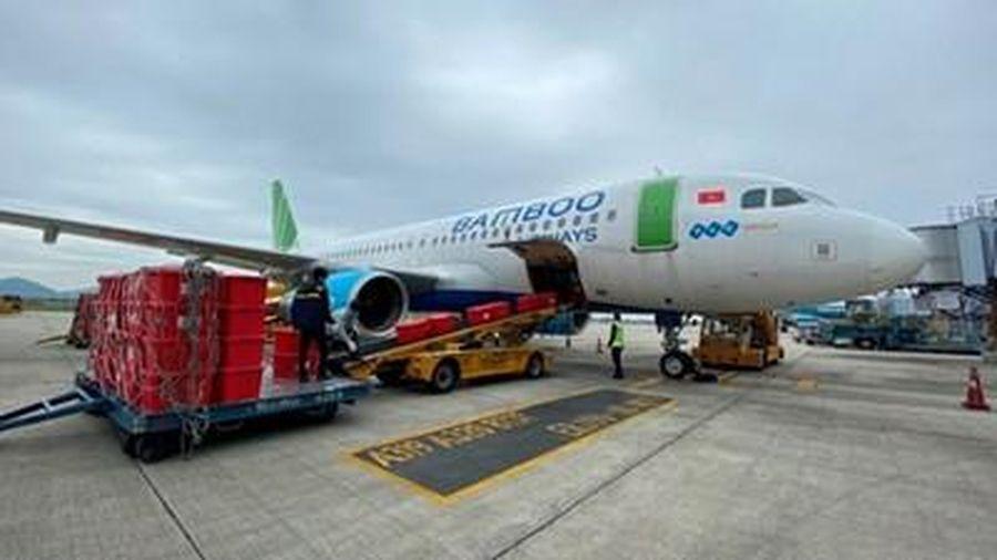 Bamboo Airways xin vận chuyển vaccine