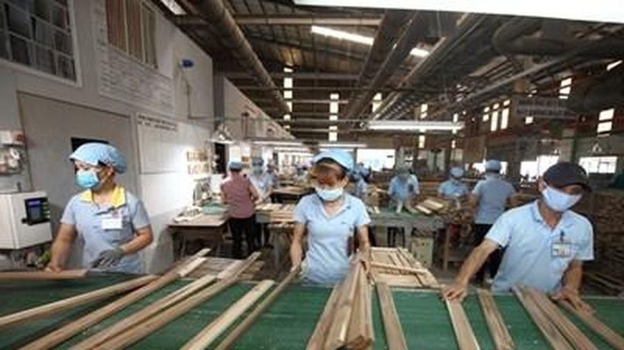 Giải pháp nào để đưa ngành gỗ Việt Nam vươn xa hơn?