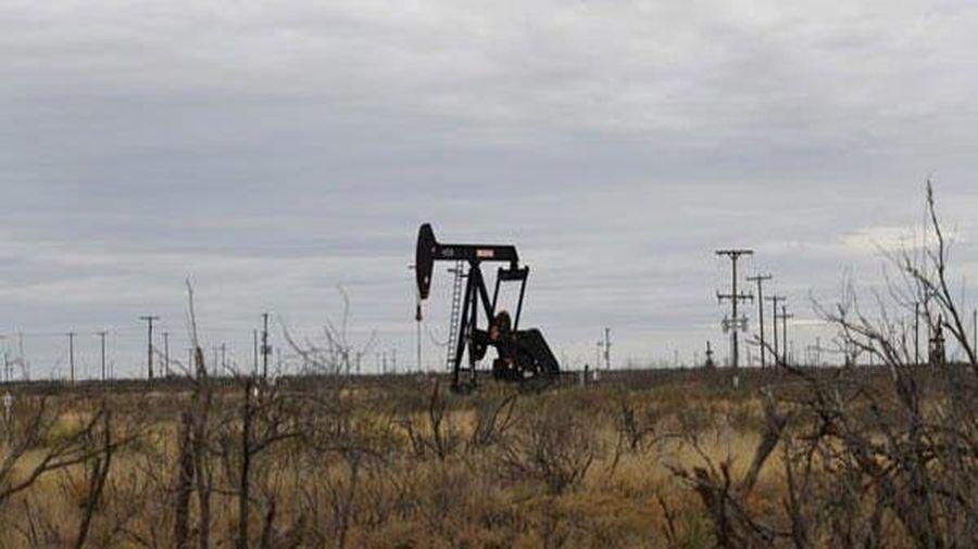 Giá dầu được dự đoán có thể tái lập mức kỷ lục 100 USD/thùng