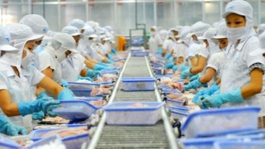 Gần 700 doanh nghiệp thủy sản được phép xuất khẩu vào Đài Loan