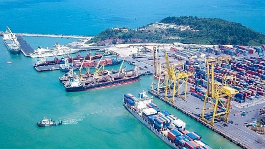 Thành lập tổ kiểm tra cước vận chuyển container bằng đường biển