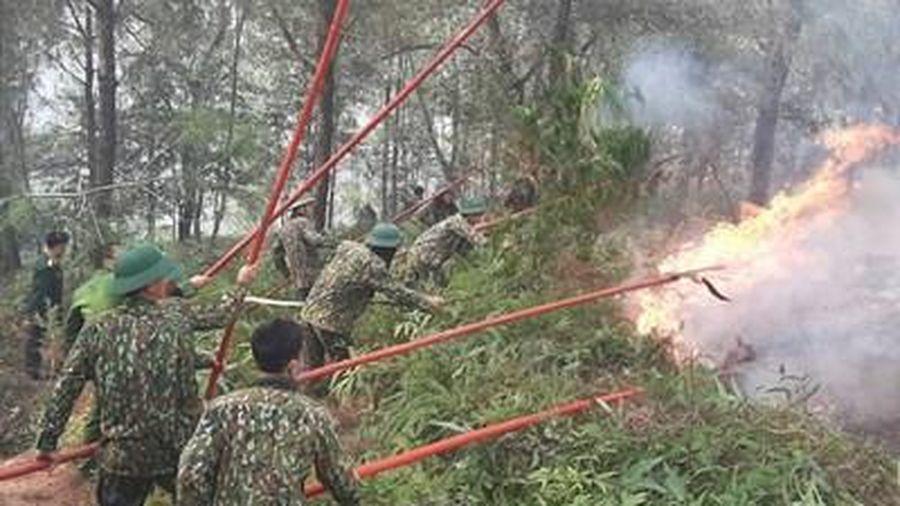Huy động hơn 200 cán bộ, chiến sĩ tham gia chữa cháy rừng