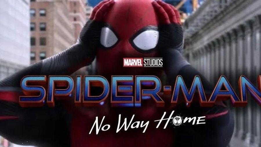 Sau bao nhiêu sóng gió, chàng siêu anh hùng số 'nhọ' Người nhện đã 'hết đường về nhà'