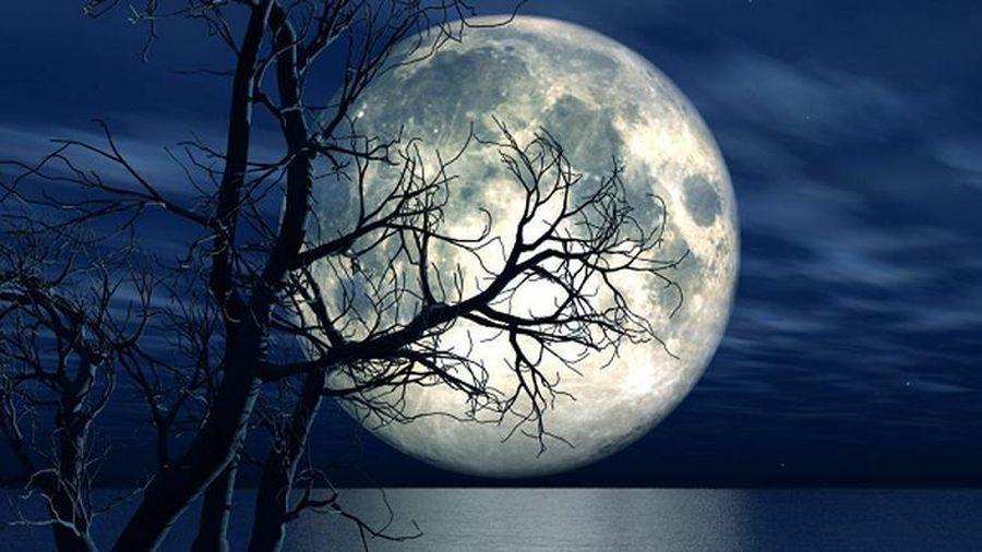 Mặt trăng là nhân tố chính quyết định sự sống trên Trái đất?