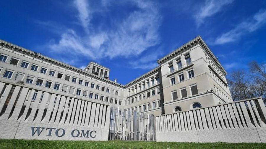 Việt Nam đề cao vai trò trung tâm của Tổ chức Thương mại Thế giới