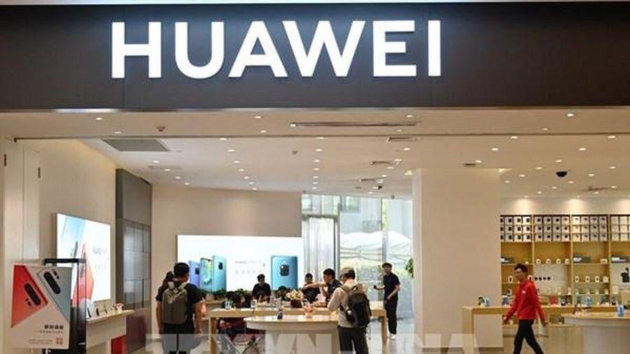 Huawei nhắm tới thị trường 'màu mỡ' Trung Đông