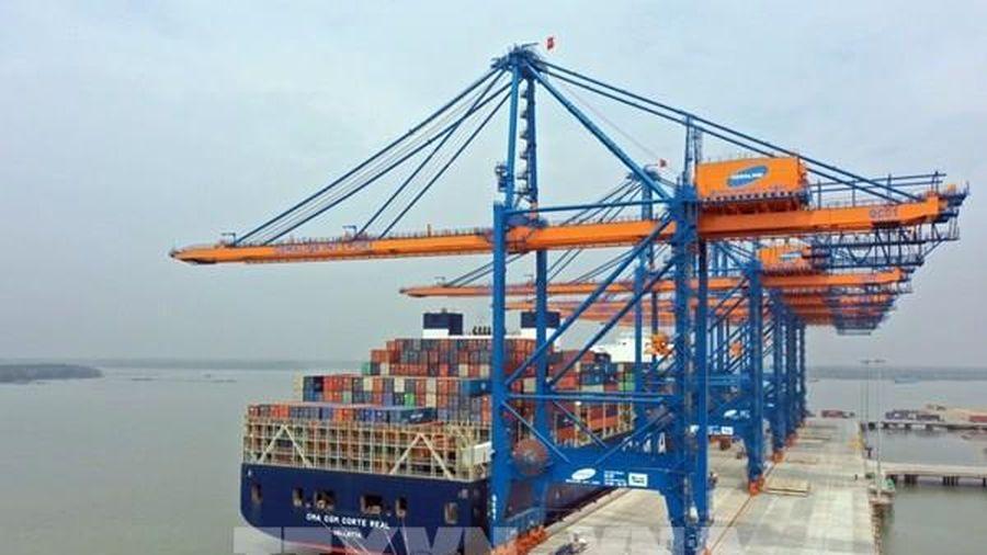 Lập tổ kiểm tra cước, phụ thu vận chuyển container