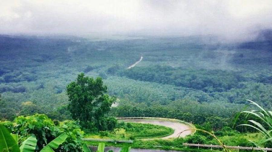 Bình Thuận: Khu phức hợp Centraland hơn 6.000 tỷ có 107ha là đất rừng