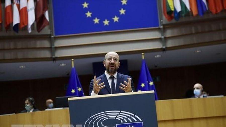 Dịch COVID-19: Các nhà lãnh đạo của EU thúc đẩy chiến dịch tiêm chủng