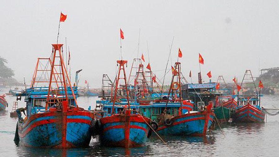 Thị xã Nghi Sơn phát triển kinh tế, nâng cao đời sống người dân