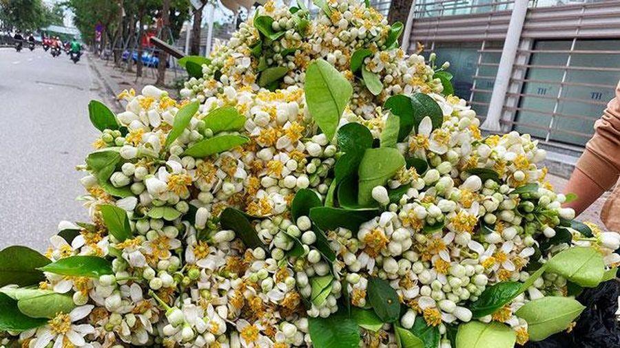 Hoa tươi giữ giá trước Rằm tháng Giêng