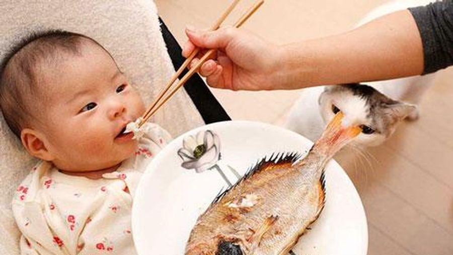 Trẻ ngủ ngon chỉ với 4 thực phẩm rẻ tiền