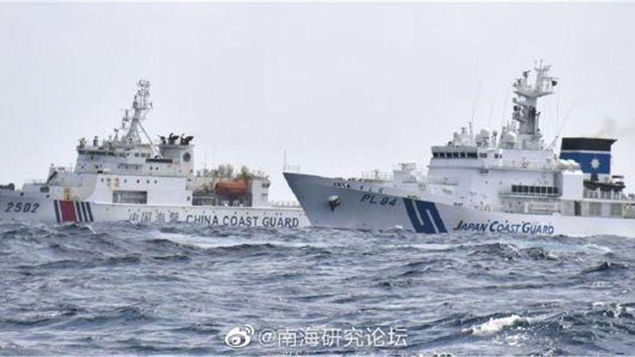 Nhật Bản tuyên bố sẽ 'nổ súng gây nguy hại' nếu Hải cảnh Trung Quốc đổ bộ lên quần đảo Senkaku