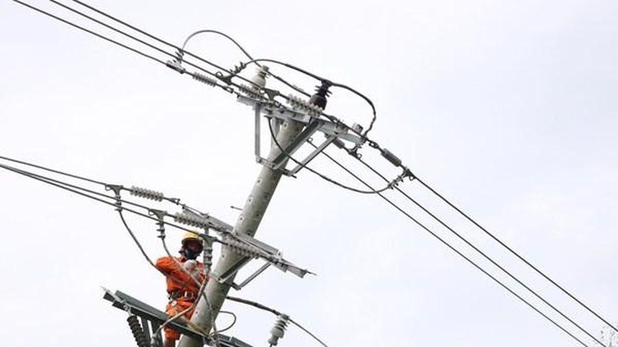 EVN HCMC tập trung đầu tư phát triển lưới điện