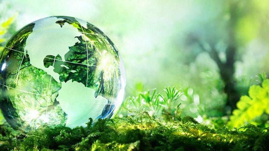 Bình luận một số quy định về quyền tiếp cận thông tin môi trường của người dân