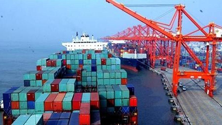 Cục Hàng hải lập tổ kiểm tra cước, phụ thu vận chuyển container
