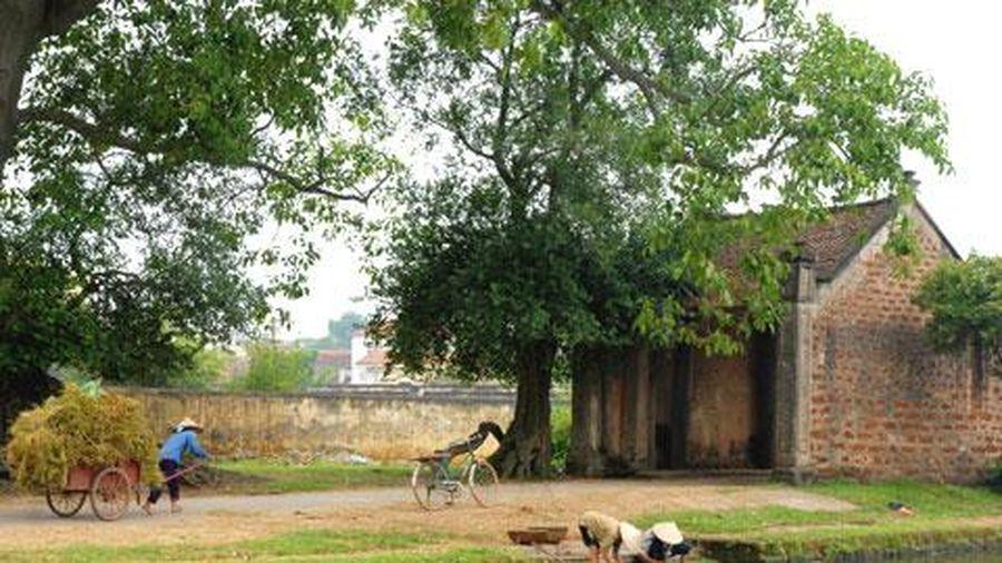 Lũy tre, cây đa, giếng nước, cổng làng