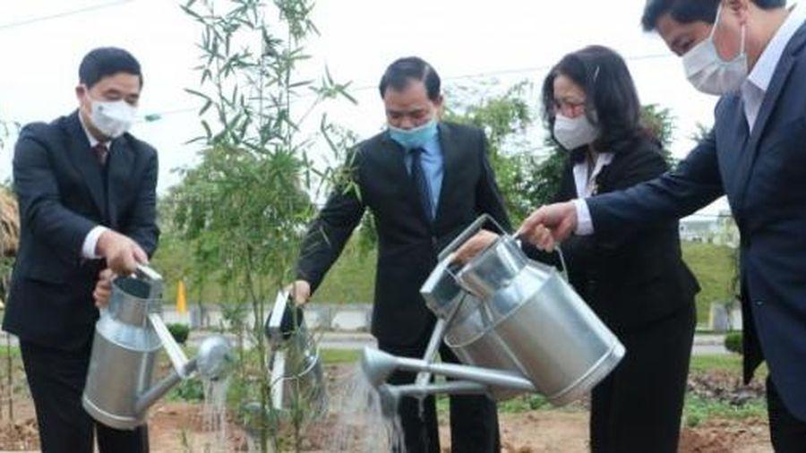 Trồng cây tại Khu bảo tồn Tre trúc đầu tiên của Việt Nam