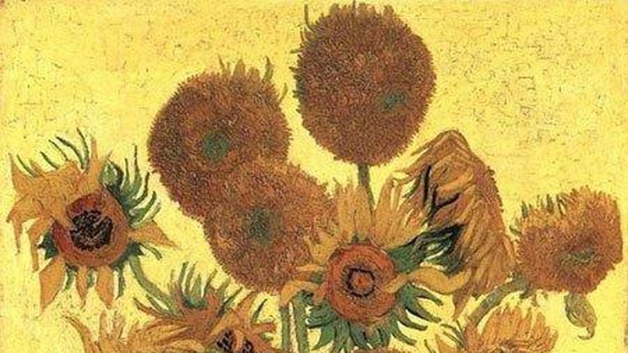 Bí ẩn về hoa hướng dương trong tranh Van Gogh