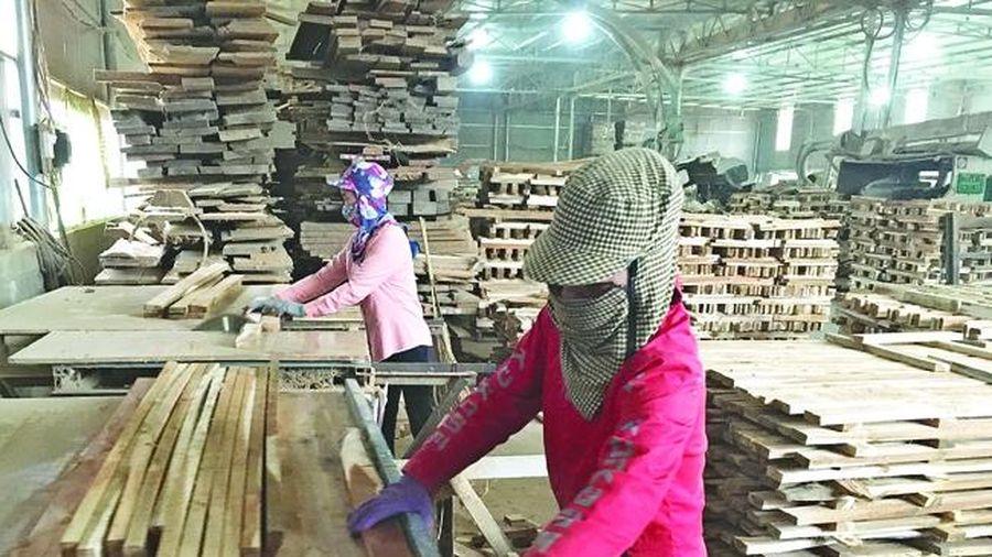 Huyện Như Thanh thu hút các doanh nghiệp có mặt hàng xuất khẩu