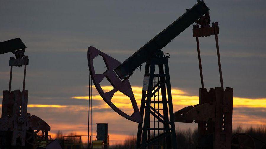 Hai tháng đầu năm, giá dầu tăng gần 30%