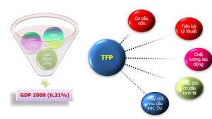 So sánh các phương pháp tính TFP và ứng dụng trong tính toán TFP cho các doanh nghiệp vừa và nhỏ ở Việt Nam