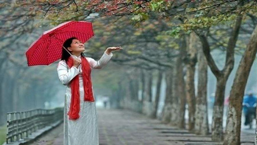 Thời tiết ngày mai 28/2: Mưa rải rác ở Hà Nội và Trung Bộ
