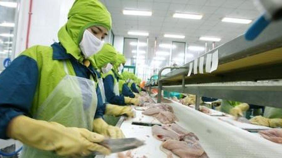 Xuất khẩu thủy sản sang Mỹ và các nước tham gia CPTPP tăng mạnh