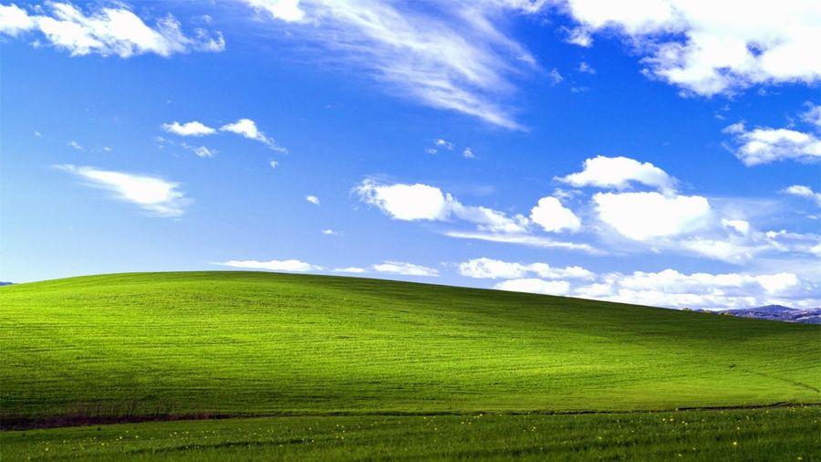 Câu chuyện đằng sau bức hình nổi tiếng của Microsoft