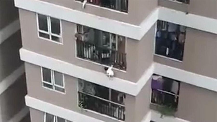 Thót tim cảnh bé gái 3 tuổi rơi từ tầng 12 chung cư 60B Nguyễn Huy Tưởng