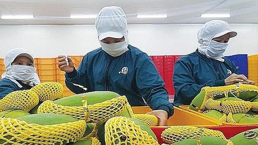 Phát triển công nghiệp chế biến nông sản