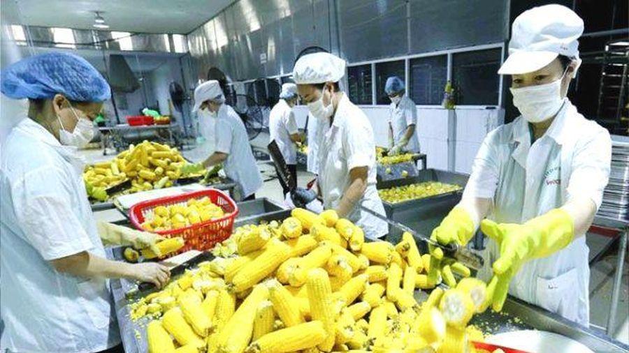 2 tháng đầu năm 2021, xuất khẩu nông sản đạt gần 6,2 tỷ USD